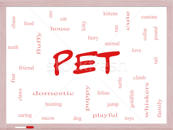 Pet Word Cloud Concept on a Dry Erase Board Stock photo © mybaitshop