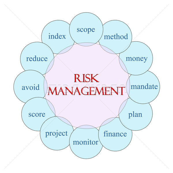 Risk Management Circular Word Concept Stock photo © mybaitshop