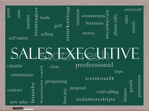 Sales Executive Word Cloud Concept on a Blackboard Stock photo © mybaitshop
