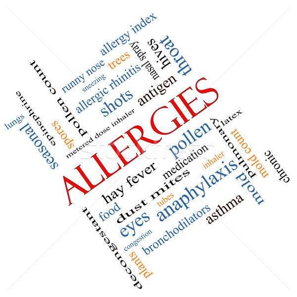Allergies Word Cloud Concept Angled Stock photo © mybaitshop