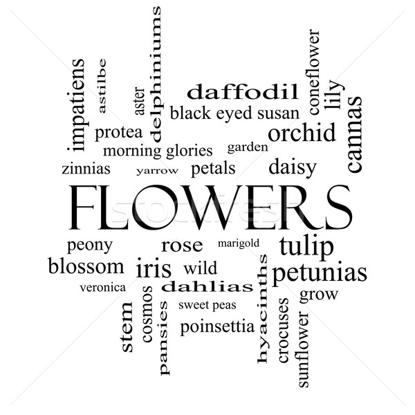 Flowers Word Cloud Concept in black and white Stock photo © mybaitshop