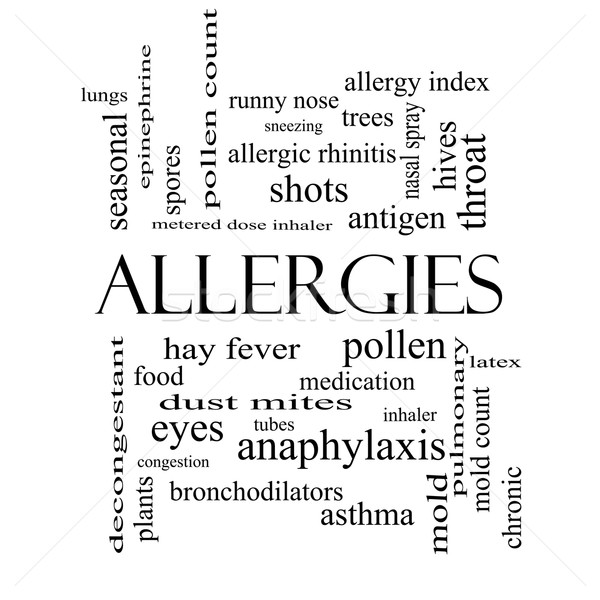 Allergies Word Cloud Concept in black and white Stock photo © mybaitshop