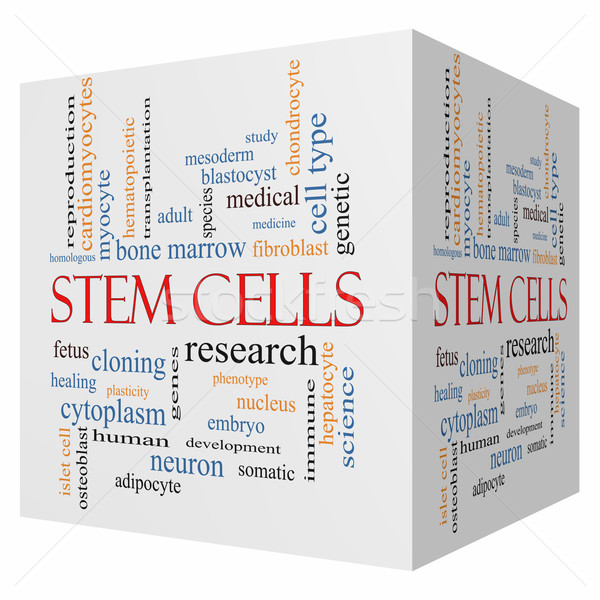Stem Cells 3D cube Word Cloud Concept Stock photo © mybaitshop