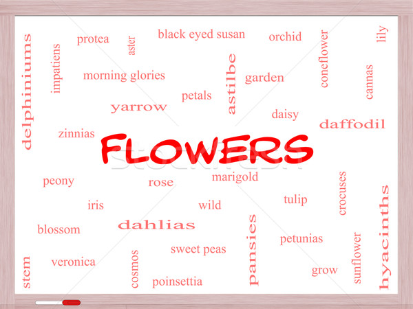 Flowers Word Cloud Concept on a Whiteboard Stock photo © mybaitshop