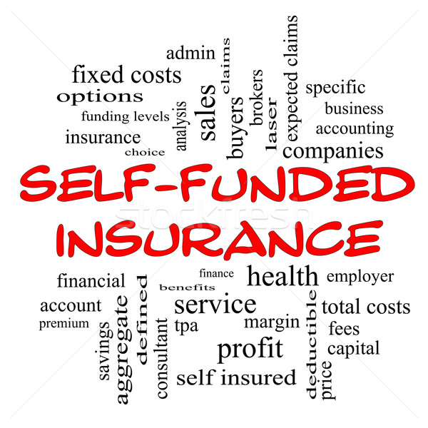 Self Funded Insurance Word Cloud in red caps Stock photo © mybaitshop