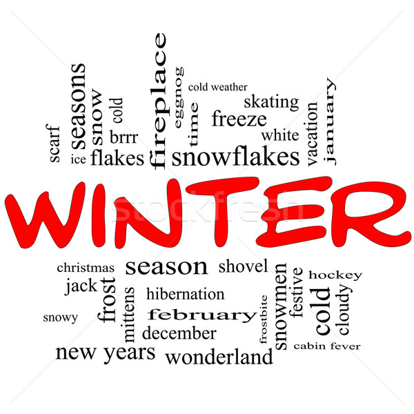 Winter Word Cloud Concept in Red Caps Stock photo © mybaitshop