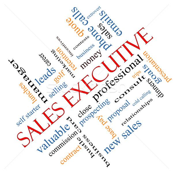 Sales Executive Word Cloud Concept Angled Stock photo © mybaitshop