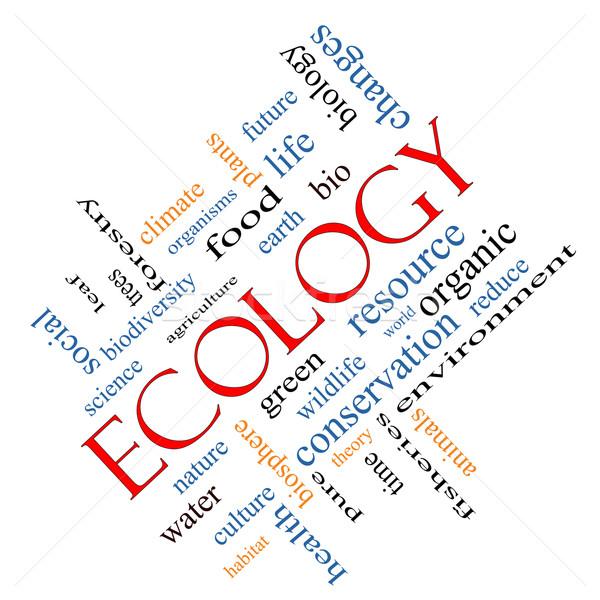 Ecology Word Cloud Concept Angled Stock photo © mybaitshop