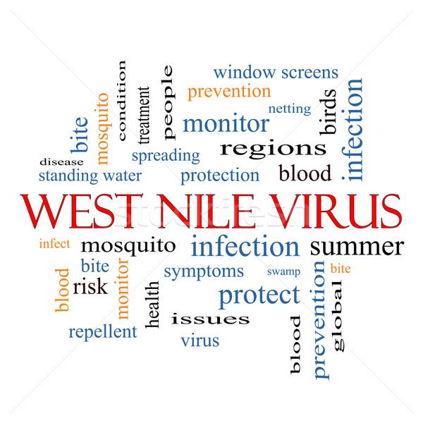 Zachód wirusa chmura słowo komara gryźć Zdjęcia stock © mybaitshop