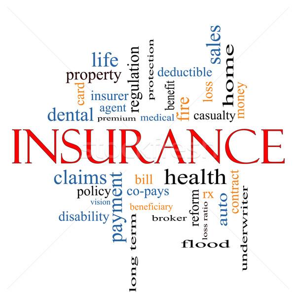 Insurance Word Cloud Concept Stock photo © mybaitshop