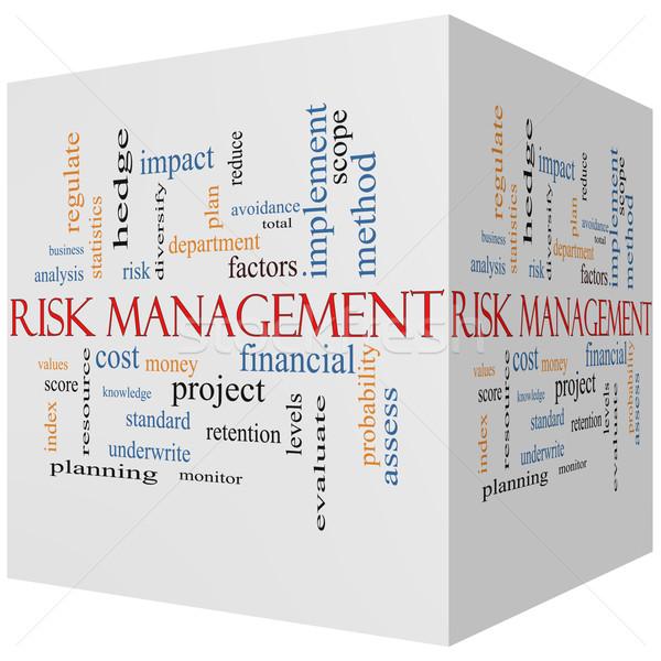 Risk Management 3D cube Word Cloud Concept Stock photo © mybaitshop