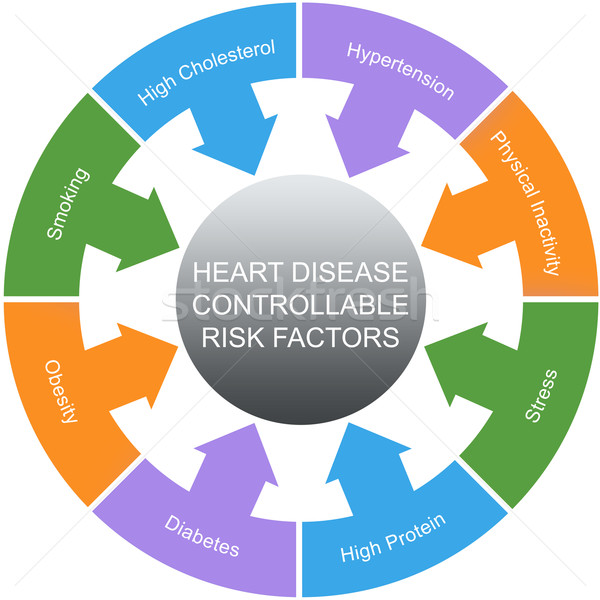 Heart Disease Controllable Risk Factors Circles Concept Stock photo © mybaitshop
