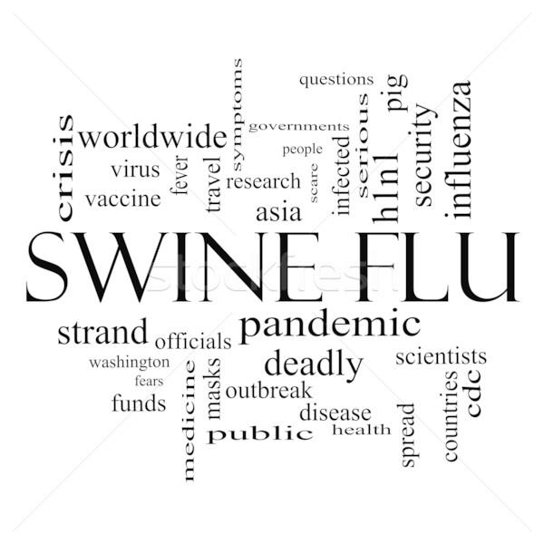 Sertés influenza szófelhő feketefehér nagyszerű láz Stock fotó © mybaitshop
