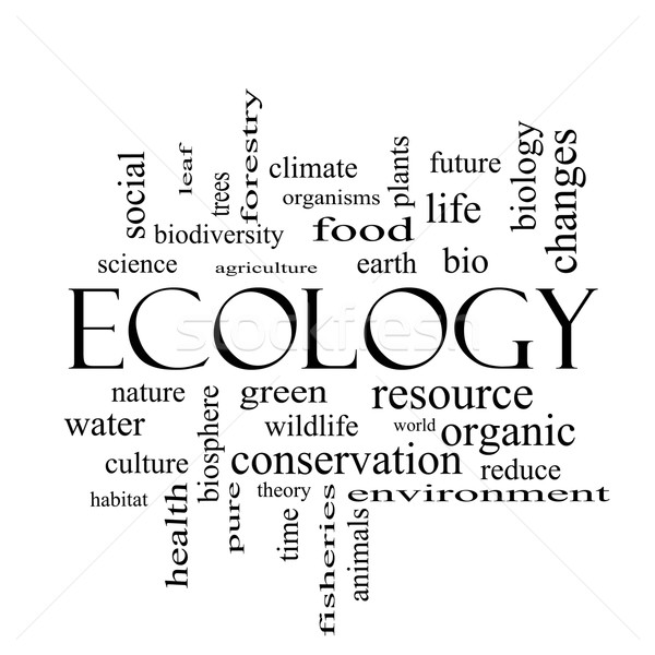 Ecology Word Cloud Concept in black and white Stock photo © mybaitshop