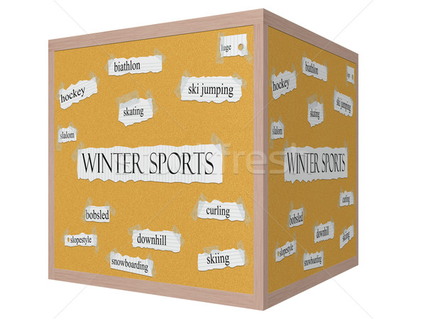Winter Sports 3D cube Corkboard Word Concept Stock photo © mybaitshop