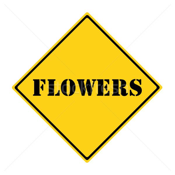 花 にログイン 黄色 黒 ダイヤモンド ストックフォト © mybaitshop