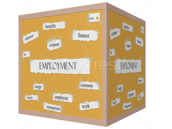 Employment 3D Cube Corkboard Word Concept Stock photo © mybaitshop