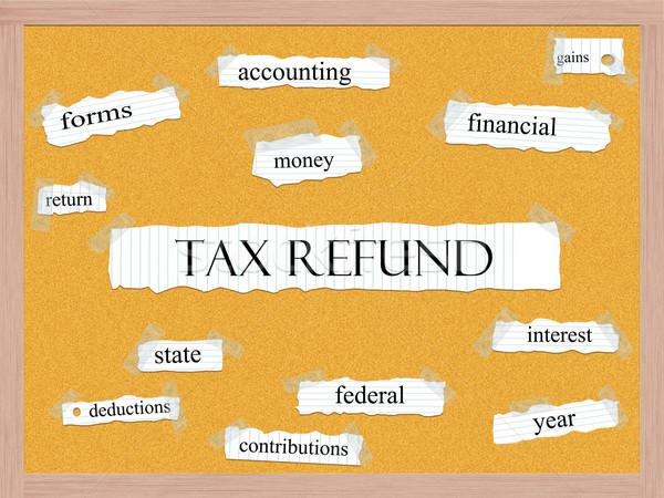Adó viszzafizetés szó nagyszerű pénz visszatérés Stock fotó © mybaitshop