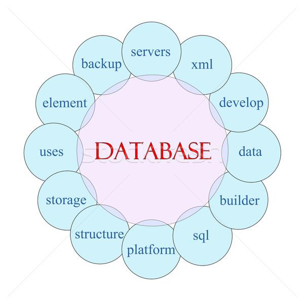 データベース 言葉 図 ピンク 青 ストックフォト © mybaitshop