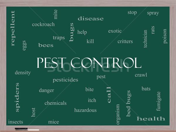 Nuage de mots tableau noir magnifique bugs poison Photo stock © mybaitshop