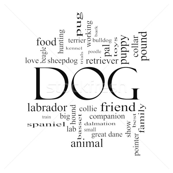Dog Word Cloud Concept in black and white Stock photo © mybaitshop