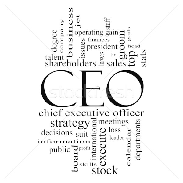 CEO Word Cloud Concept in Black and White Stock photo © mybaitshop