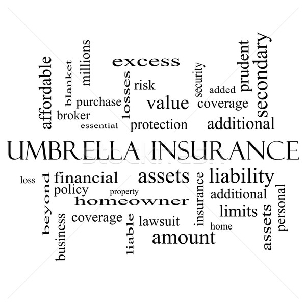 Umbrella Insurance Word Cloud Concept in black and white Stock photo © mybaitshop