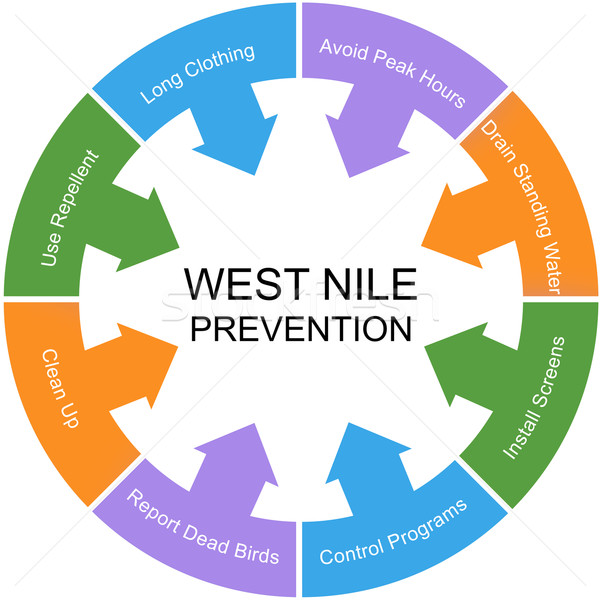 West Nile Prevention Word Circle Concept Stock photo © mybaitshop