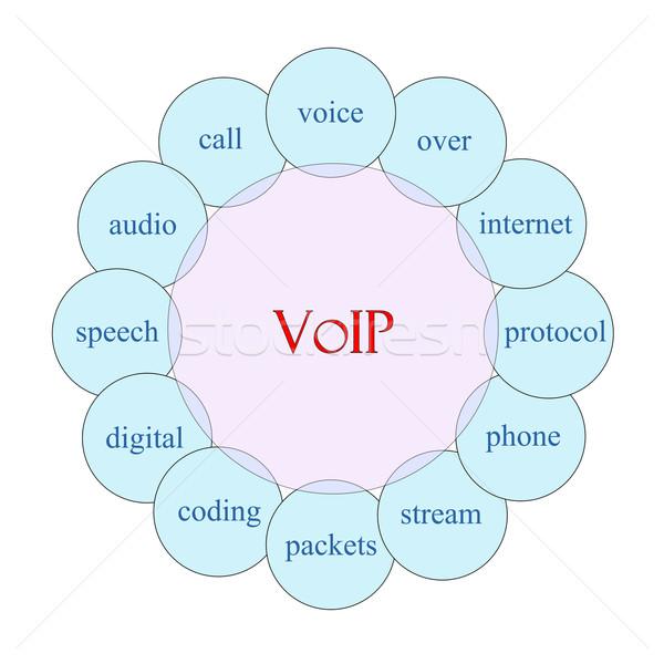 Voip circulaire mot diagramme rose bleu Photo stock © mybaitshop