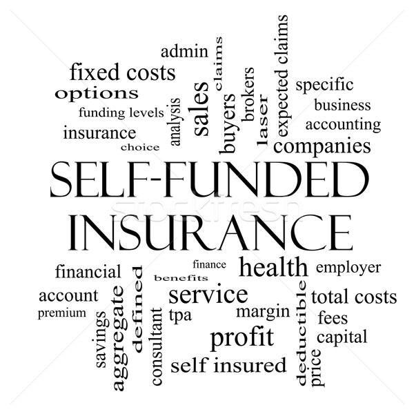 Self Funded Insurance Word Cloud in black and white Stock photo © mybaitshop