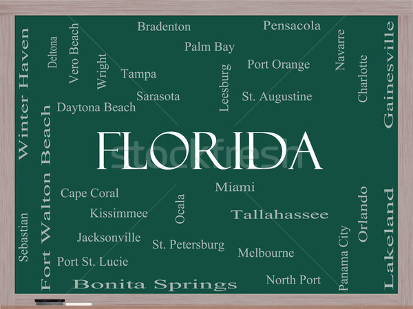Florida State Word Cloud Concept on a Blackboard Stock photo © mybaitshop