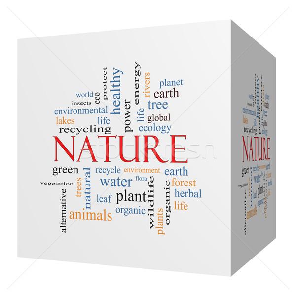 Nature 3D cube Word Cloud Concept Stock photo © mybaitshop