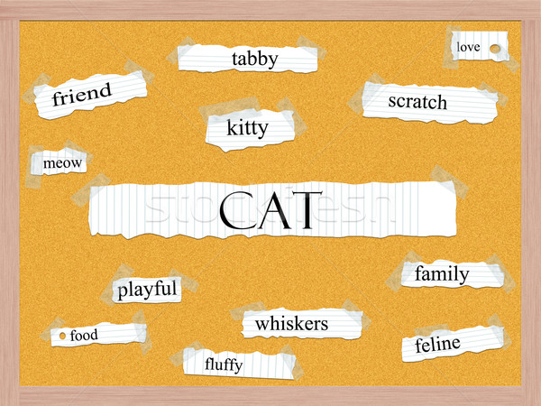 кошки слово Китти любви больше Сток-фото © mybaitshop