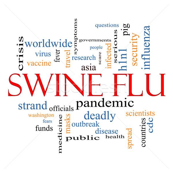 Swine Flu Word Cloud Concept Stock photo © mybaitshop