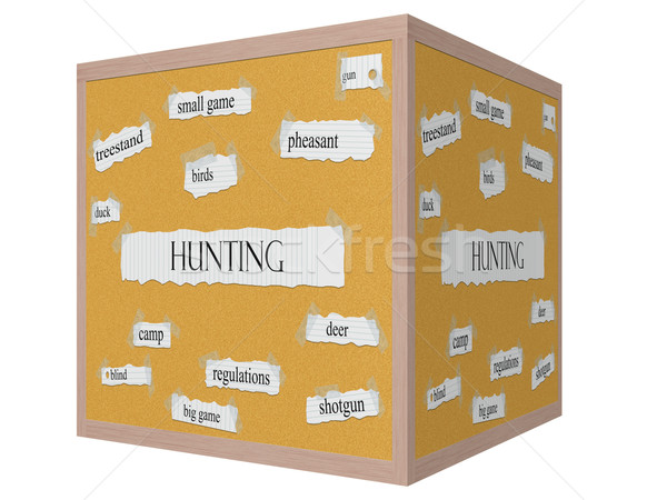Hunting 3D cube Corkboard Word Concept Stock photo © mybaitshop