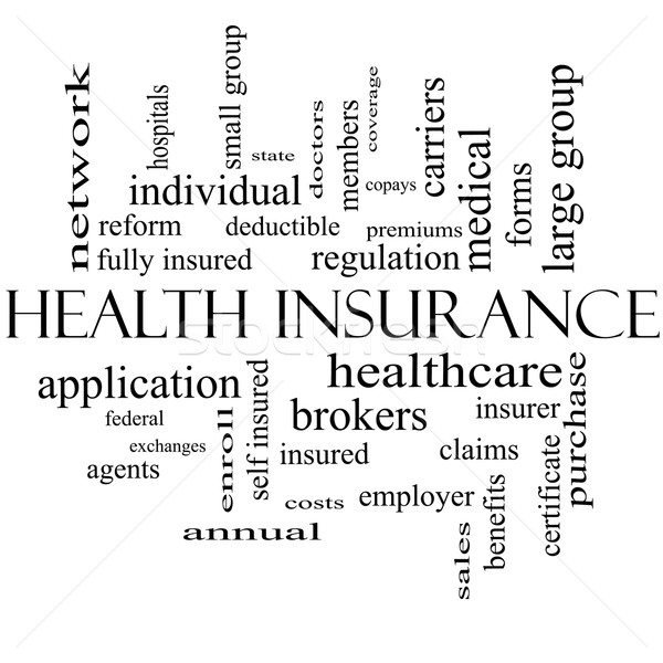 Health Insurance Word Cloud Concept in black and white Stock photo © mybaitshop