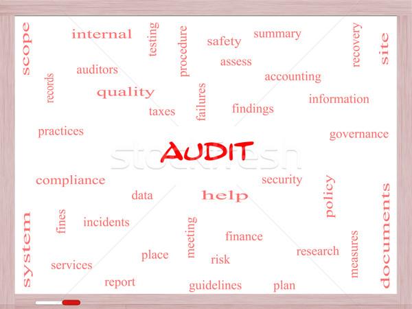 Könyvvizsgálat szófelhő tábla nagyszerű pénzügy adat Stock fotó © mybaitshop