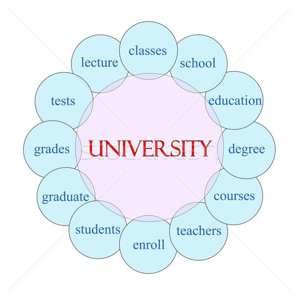 Uczelni słowo schemat różowy niebieski Zdjęcia stock © mybaitshop