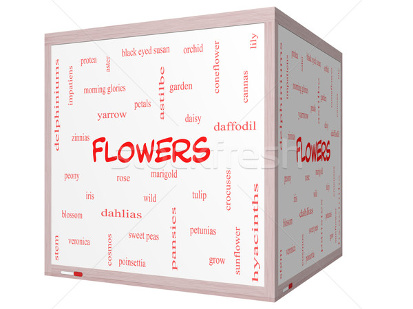 Flowers Word Cloud Concept on a 3D cube Whiteboard Stock photo © mybaitshop