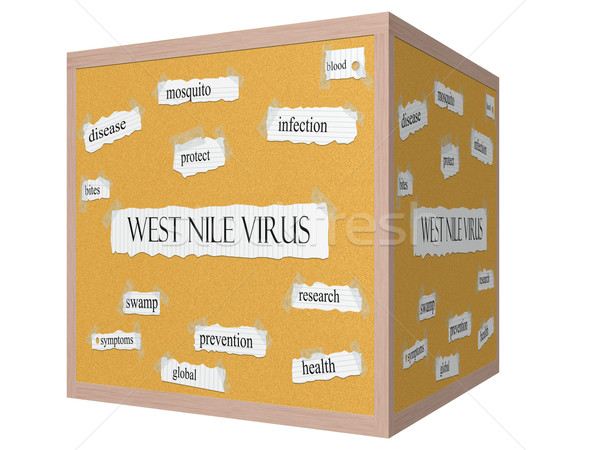 West Nile Virus 3D cube Corkboard Word Concept Stock photo © mybaitshop
