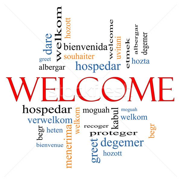 üdvözlet külföldi nyelv szófelhő üdvözlet különböző Stock fotó © mybaitshop