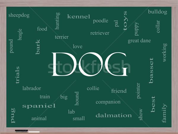 Dog Word Cloud Concept on a Blackboard Stock photo © mybaitshop