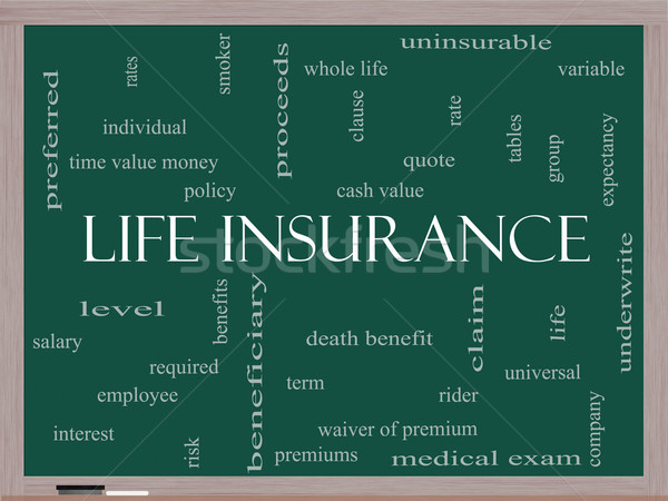 Life Insurance Word Cloud Concept on a Blackboard Stock photo © mybaitshop