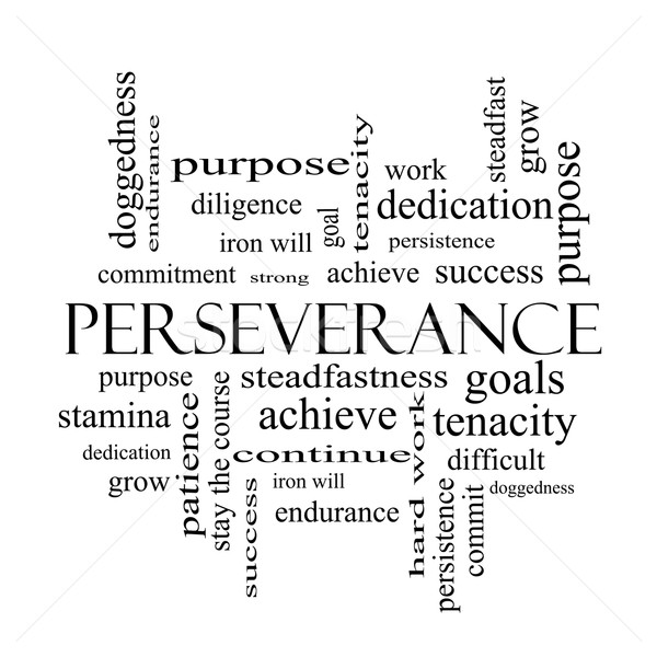 Perseverance Word Cloud Concept in black and white Stock photo © mybaitshop