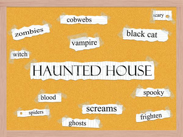 Haunted House Corkboard Word Concept Stock photo © mybaitshop