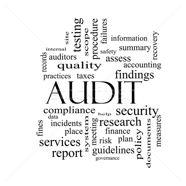 Audit Word Cloud Concept in black and white Stock photo © mybaitshop