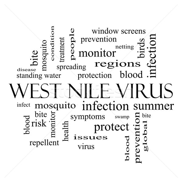 West Nile Virus Word Cloud Concept in black and white Stock photo © mybaitshop