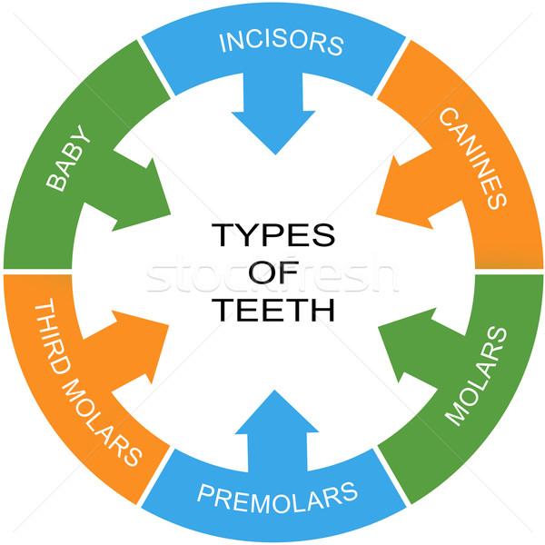 Types of Teeth Word Circle Concept Stock photo © mybaitshop