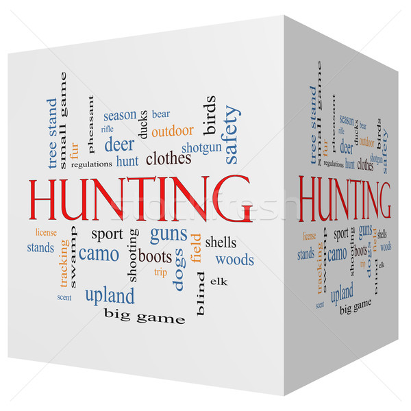 Hunting 3D cube Word Cloud Concept Stock photo © mybaitshop