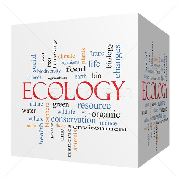 Ecology 3D cube Word Cloud Concept Stock photo © mybaitshop